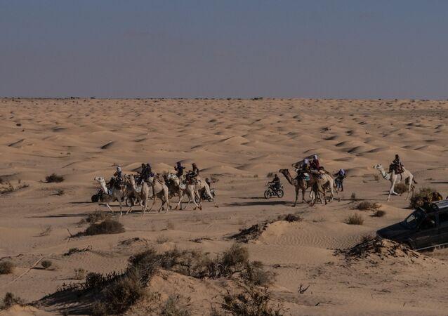 Le désert du Sahara, aux abords de la localité de Douz (Tunisie)
