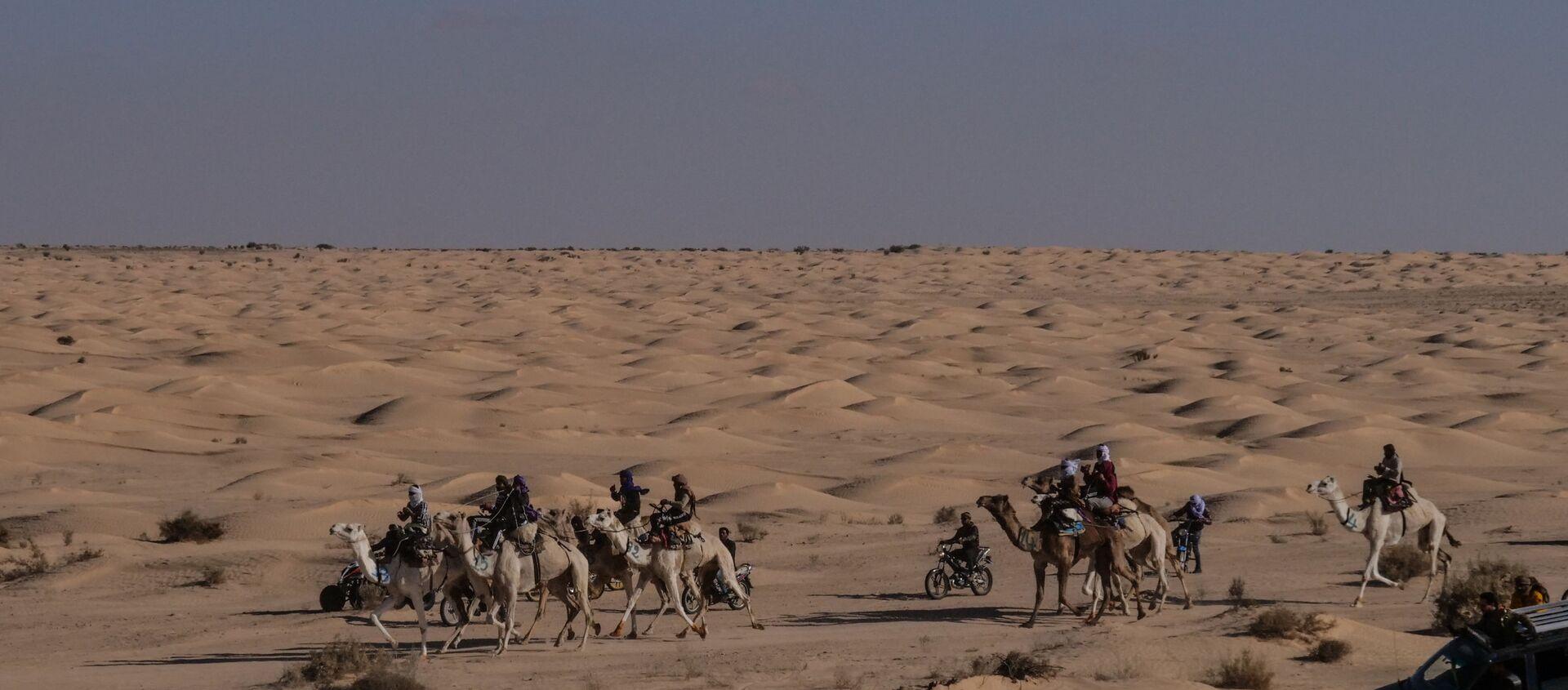 Le désert du Sahara, aux abords de la localité de Douz (Tunisie) - Sputnik France, 1920, 17.12.2020