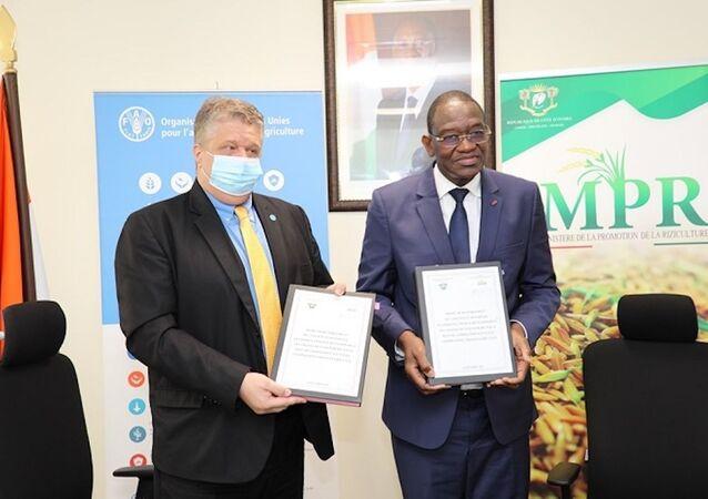 Le ministre ivoirien de la Promotion de la riziculture Gaoussou Touré et la FAO ont procédé à la signature d'une convention pour le développement des chaînes de valeur du riz.