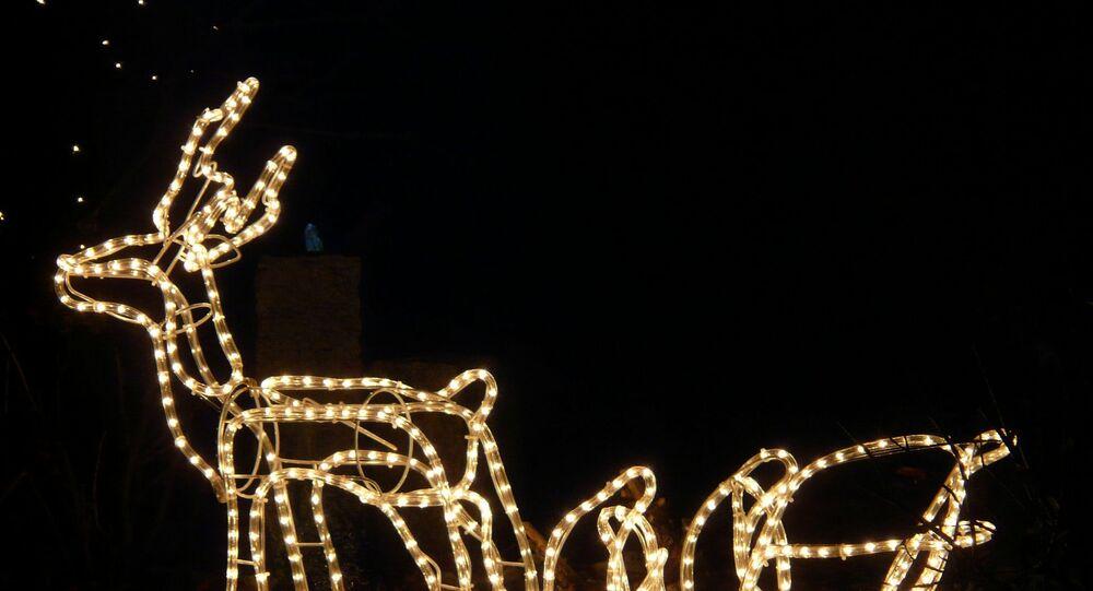 rennes de Noël