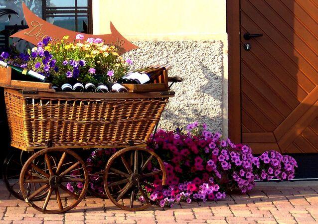 Alsace (image d'illustration)