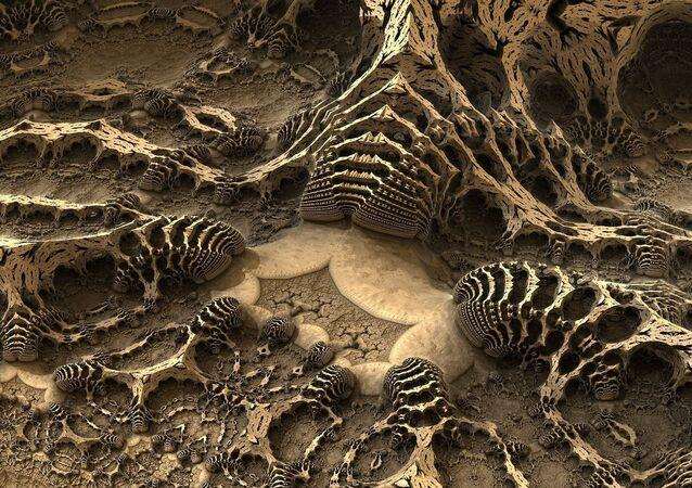 Des fossiles (représentation artistique)