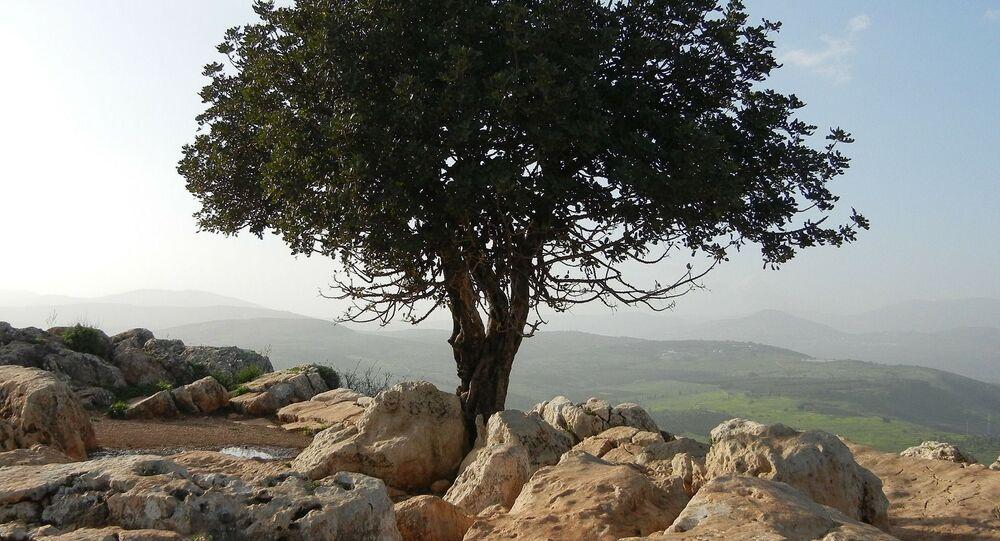 La Cisjordanie