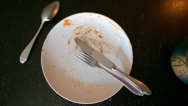 Une assiette sale - Sputnik France