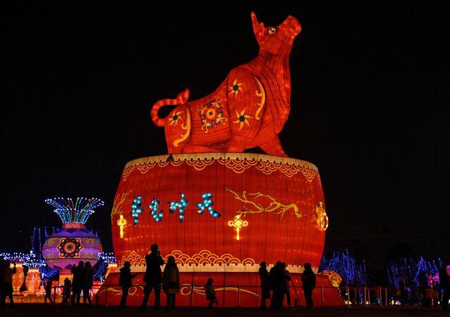 Décorations pour le Nouvel An lunaire en Chine, à Wuhan, 2021