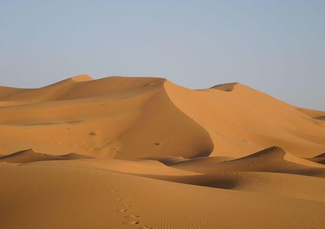 Le désert du Sahara (image d'illustration)