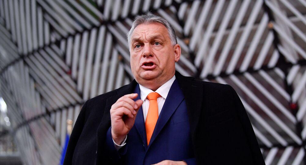 Viktor Orban (Photo de JOHN THYS / POOL / AFP)