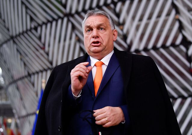 Viktor Orban (Photo de JOHN THYS / POOL / AFP)