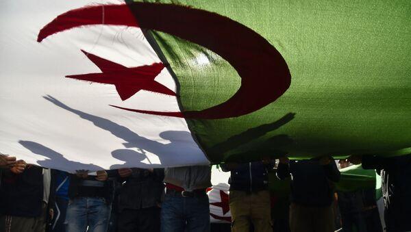 Le drapeau de l'Algérie - Sputnik France