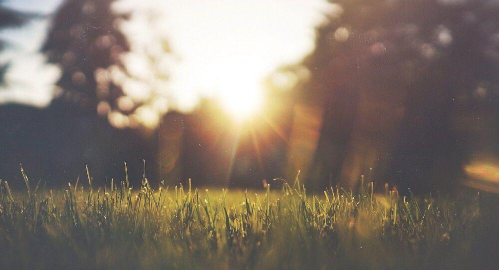 Le soleil, la nature