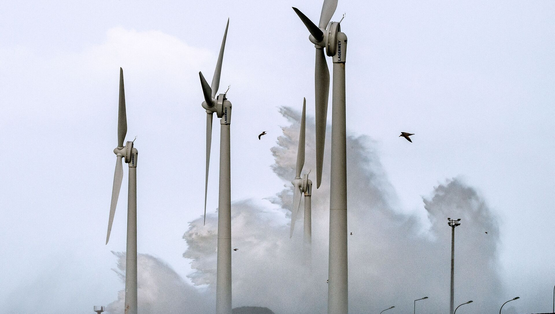 Éoliennes au port de Boulogne-sur-Mer, 8 février 2016 (Photo PHILIPPE HUGUEN / AFP) - Sputnik France, 1920, 27.07.2021