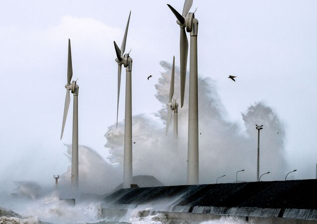 Éoliennes au port de Boulogne-sur-Mer, 8 février 2016 (Photo PHILIPPE HUGUEN / AFP)