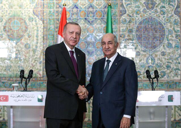 Rencontre entre le Président Tebboune et le Président Erdogan