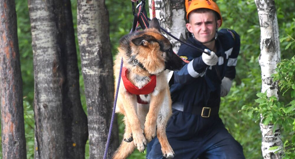 Service cynologique du ministère russe des Situations d'urgence