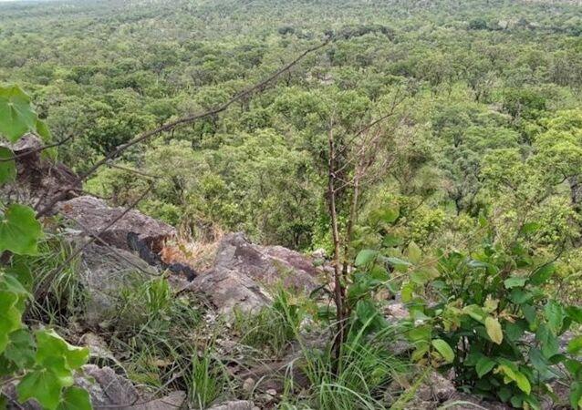 Une vue panoramique du parc national de la Comoé