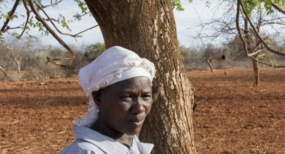 Sécheresse en Côte d'Ivoire