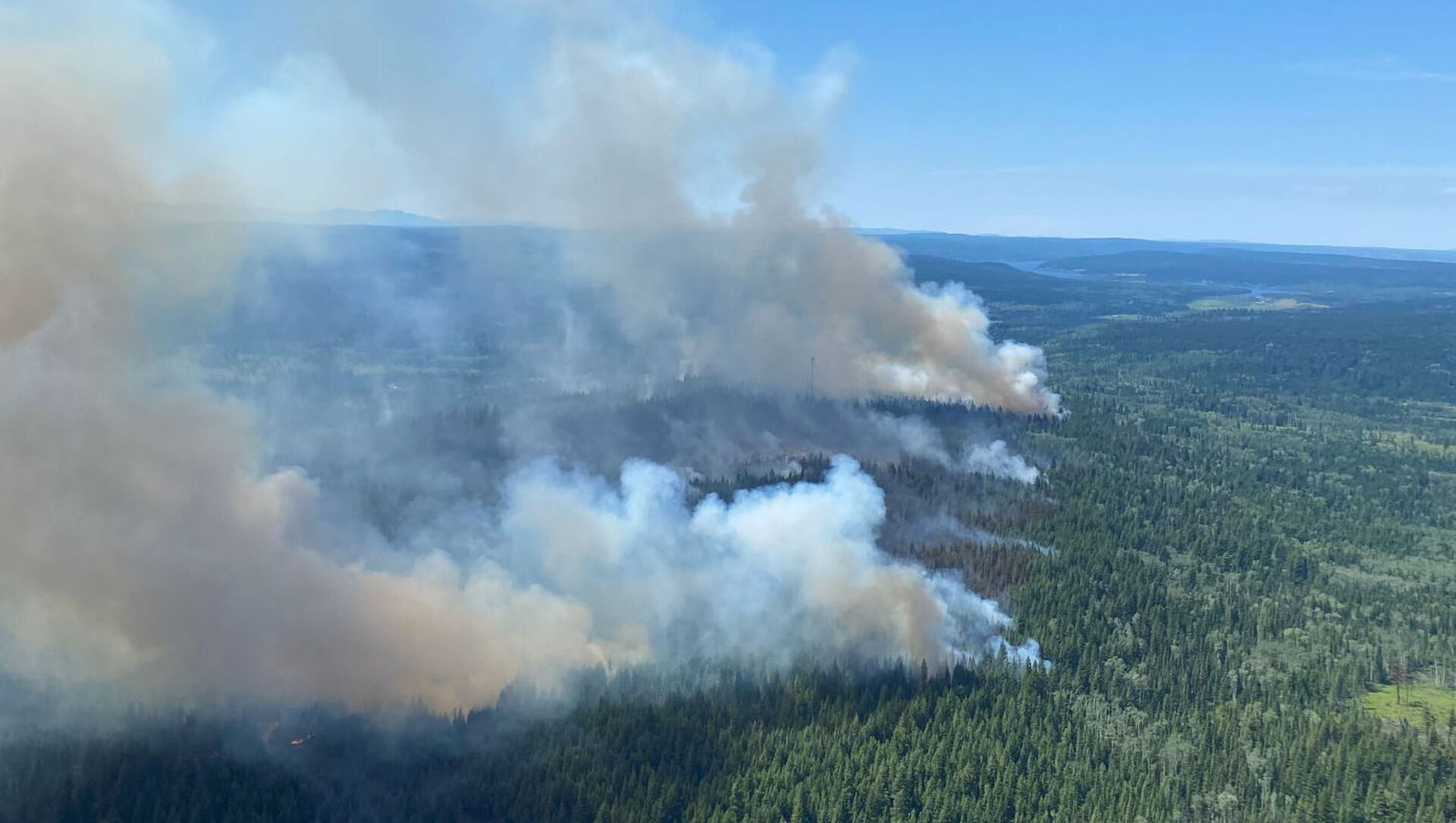 Un feu de forêts dans la province canadienne de Colombie-Britannique, le 2 juillet 2021 - Sputnik France, 1920, 13.08.2021