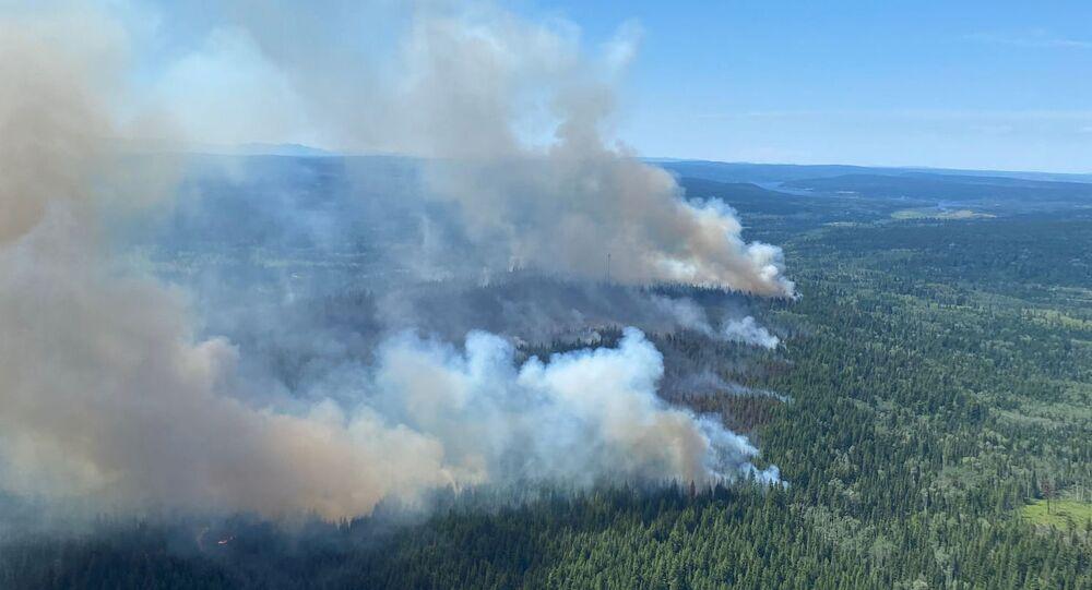 Un feu de forêt dans la province canadienne de Colombie-Britannique, le 2 juillet 2021