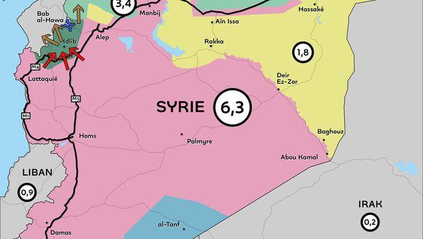 Des millions de syriens suspendus à l'aide humanitaire et aux rivalités territoriales - Sputnik France
