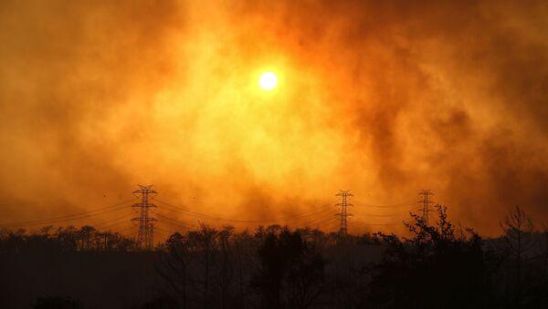 Un incendie de forêt près de Manavgat, en Turquie (archive photo) - Sputnik France