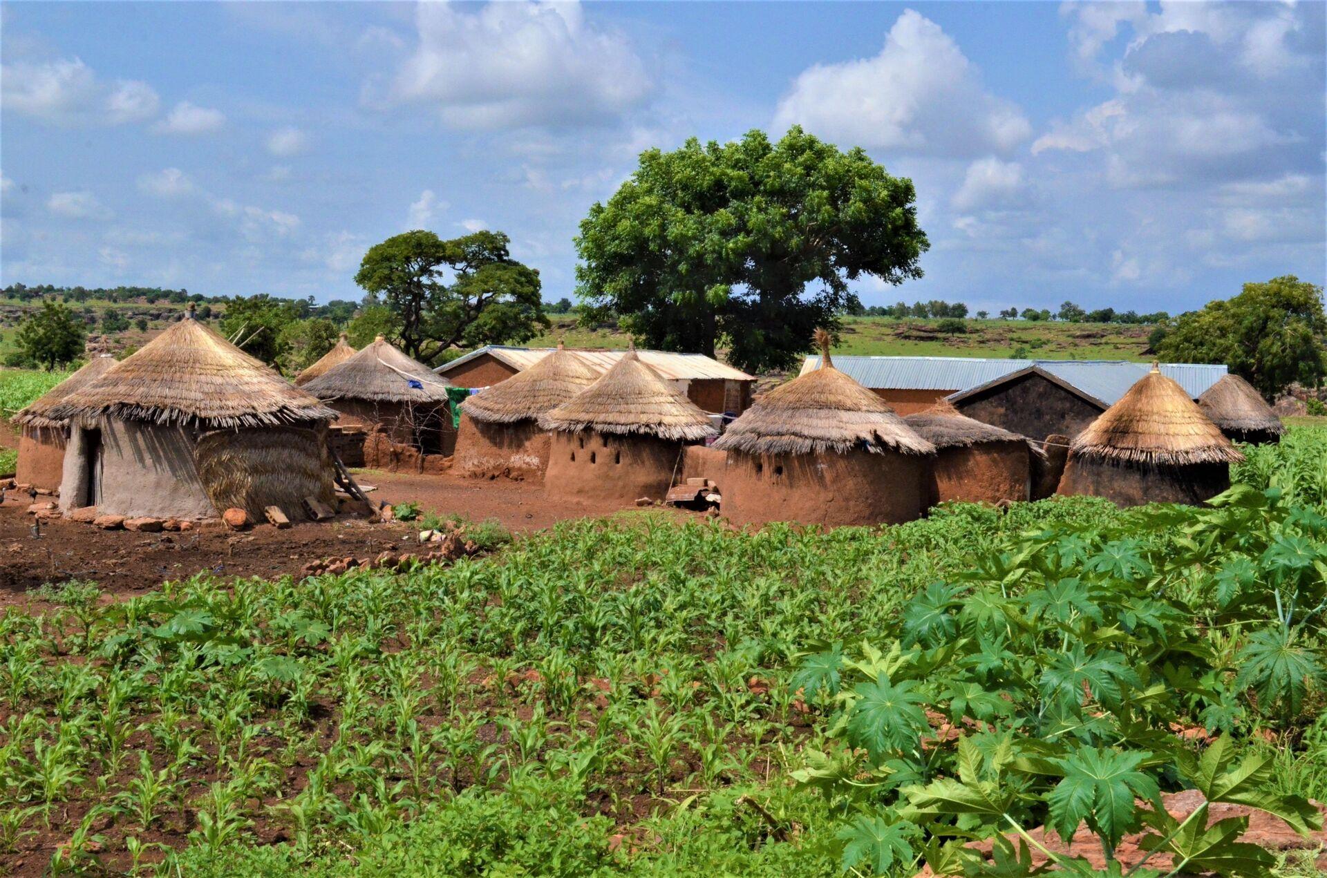 La maison du vieux Bomboma Bidjobgue entourée de petites cultures de maïs et de soja - Sputnik France, 1920, 21.09.2021