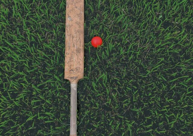 Cricket, image d'illustration