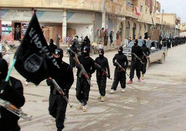 Combattants d'État islamiques en Syrie (Archive photo)