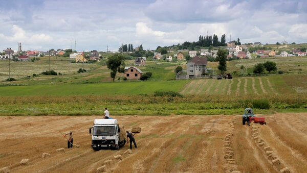 Farmers load straw in the fields outside the town of Brody, 440 kilometers (275 miles) west of Kiev, Ukraine - Sputnik France