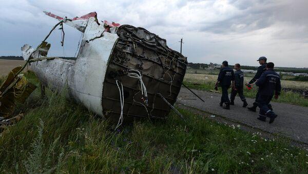 Crash du vol MH17 en Ukraine - Sputnik France