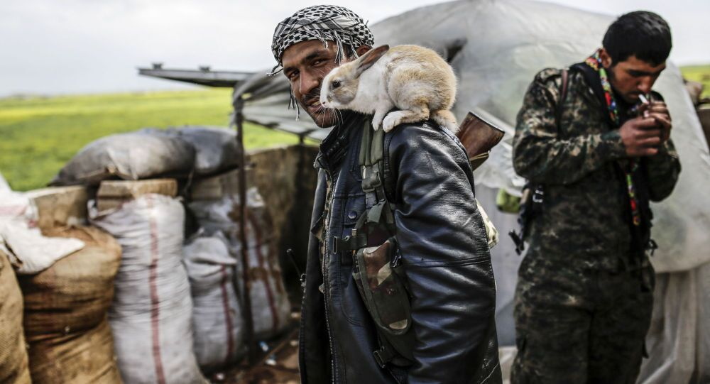 Combattant kurde
