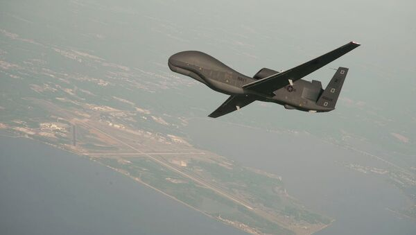 RQ-4 Global Hawk unmanned aerial vehicle conducts tests over Naval Air Station Patuxent River - Sputnik France