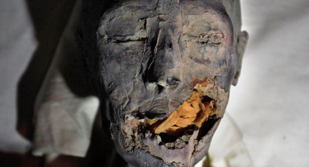 Momie égyptienne. Image d'illustration
