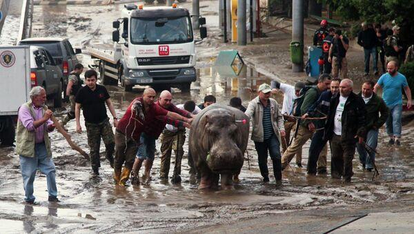 Inondations à Tbilissi - Sputnik France