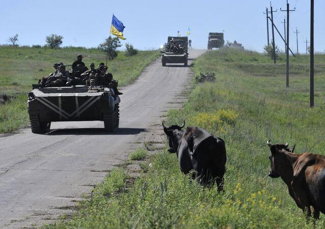 Région de Donetsk (archives)