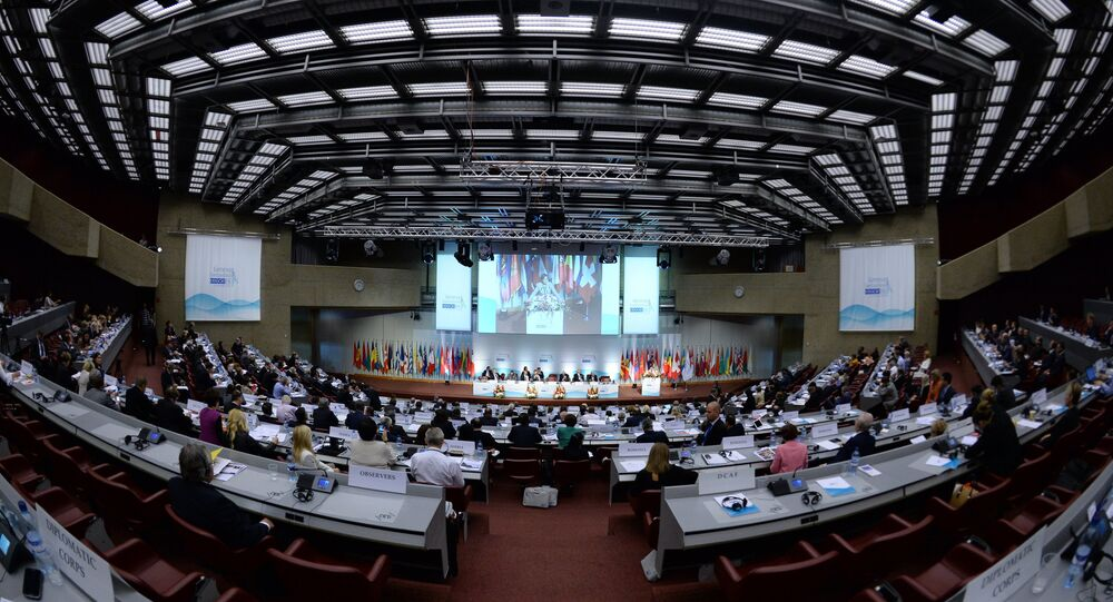 L'Assemblée parlementaire de l'OSCE. Archive photo