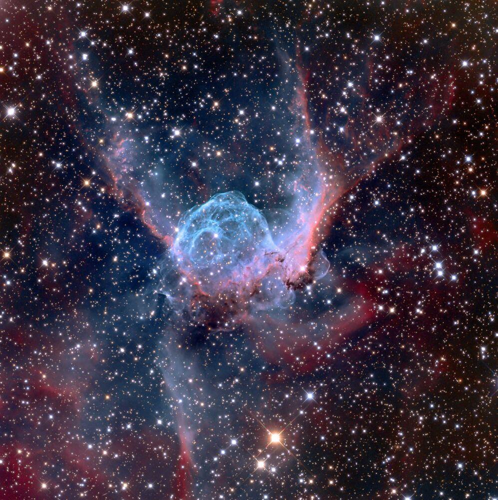 La nébuleuse du Casque de Thor dans la constellation du Grand Chien