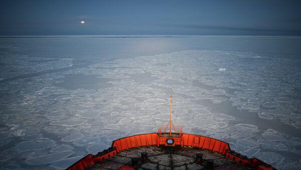Экспедиция на Северный полюс - Sputnik France