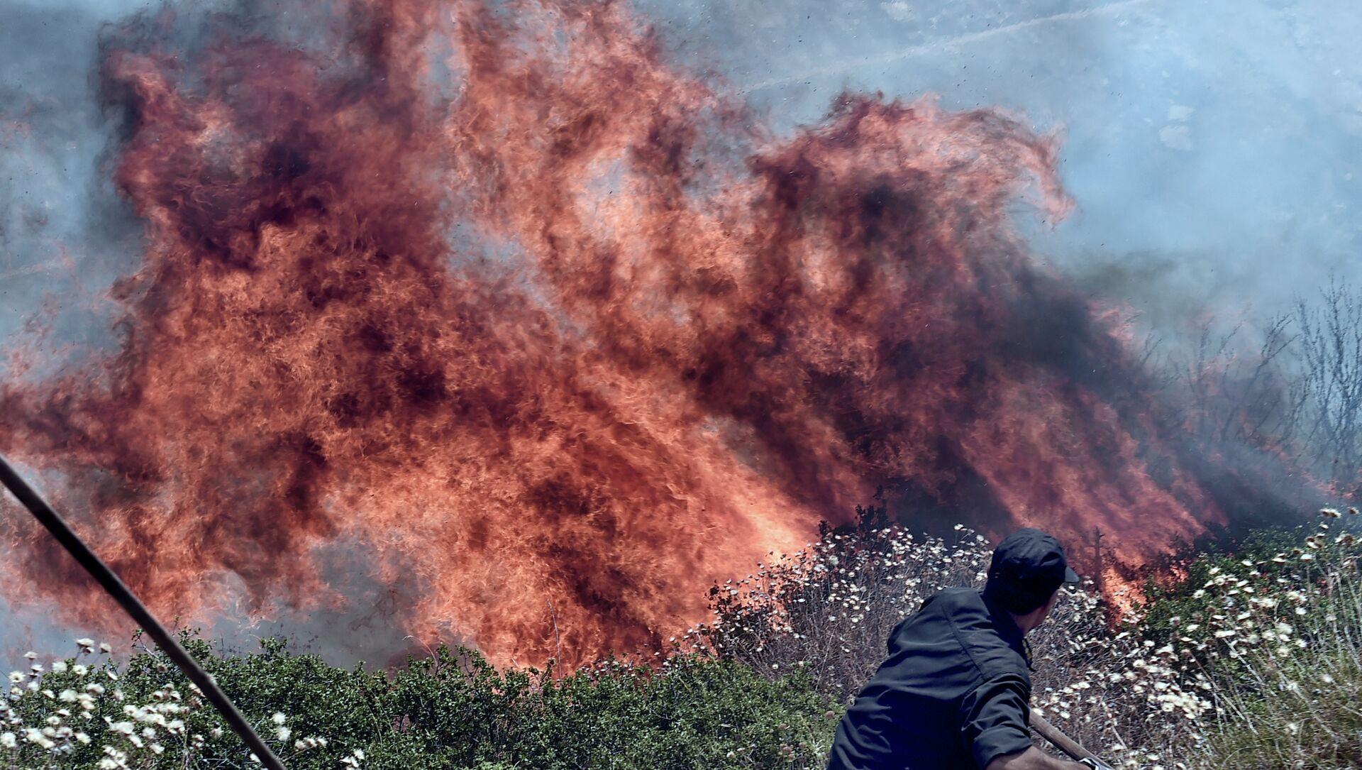 Les incendies. Athènes - Sputnik France, 1920, 06.08.2021