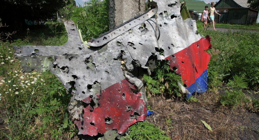 Débris du Boeing malaisien en Ukraine. Archive photo