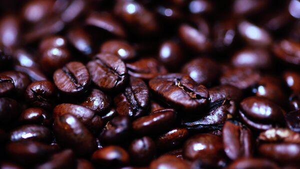 Granos de café tostado - Sputnik France