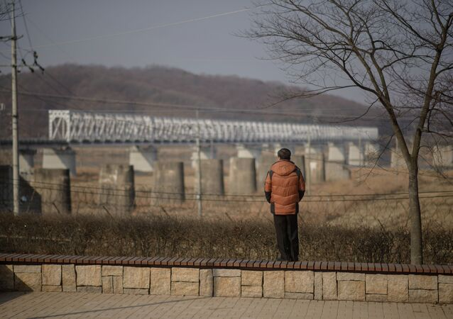 A man stands facing towards North Korea at Imjingak park, south of the Military Demarcation Line and Demilitarized Zone (DMZ) separating North and South Korea, on February 19, 2015.