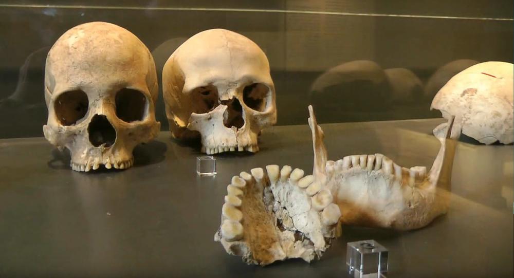Une équipe d'archéologues a découvert en Allemagne une tombe commune datant du Néolithique