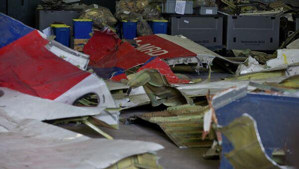 Fragments du Boeing malaisien abattu en Ukraine - Sputnik France