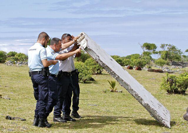 Un fragment d'aile découvert à La Réunion