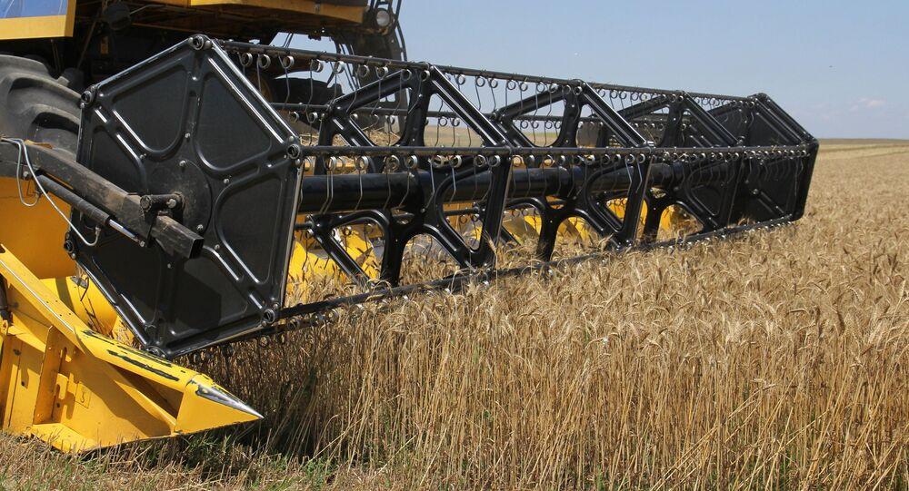 Récolte de blé en Russie