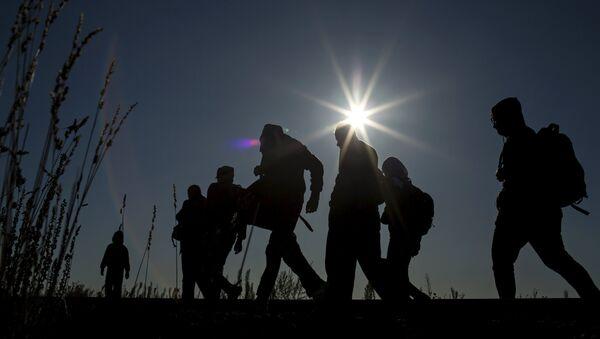 Des migrants en Hongrie - Sputnik France