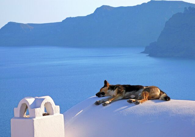 La sieste à Santorin (Grèce)