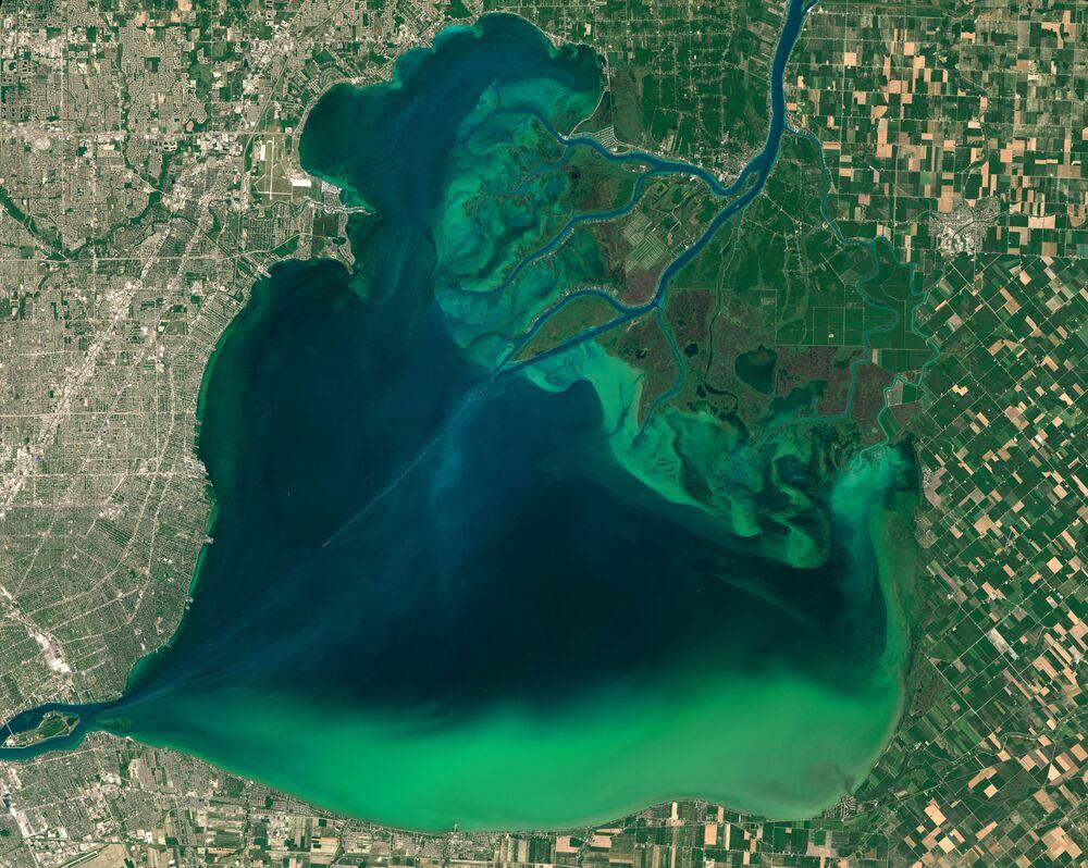 Le fleurissement des algues dans les lacs Sainte-Claire et Erié (Grands lacs)