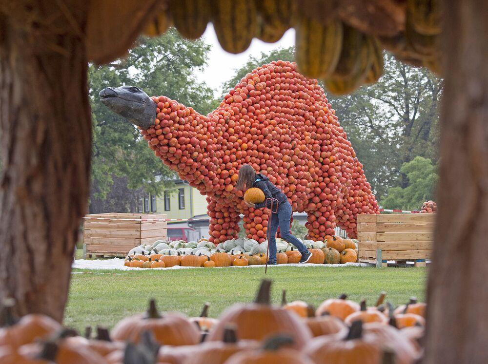Préparatifs de l'exposition agricole d'automne Sur les traces des dinosaures, Erfurt, Allemagne