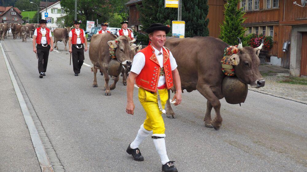 La Désalpe est une fête suisse traditionnelle consacrée au retour du bétail des pâturages alpins, Urnäsch, Suisse